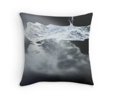 Leaf Skeleton and Shadow Throw Pillow