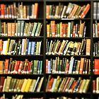 Library Books by Debbra Obertanec
