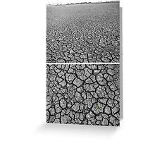 Dangars Lagoon, Uralla, New South Wales, Australia - Diptych Greeting Card