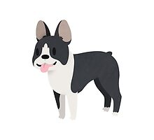 Happy Boston Terrier by Claire Stamper
