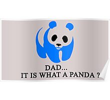 What is a Panda? Poster