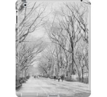 Central Park, New York iPad Case/Skin