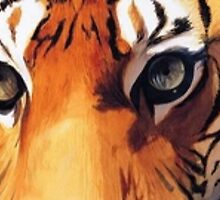 """Eyes of the Tiger"" Watercolor  by Paul Jackson"