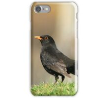 Posing Blackbird iPhone Case/Skin