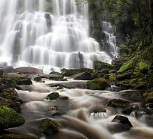 Nelson Falls by Naomi Frost