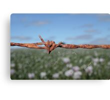 ......barbed Canvas Print