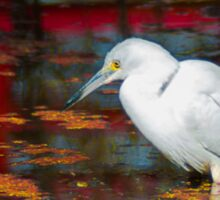 Snowy Egret Sticker