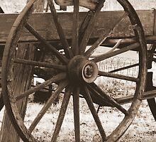 Wagon Wheel by julesdavis