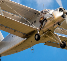 "Antonov An-2T Colt LY-BIG ""Balkan Bear"" Sticker"