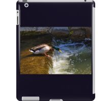 Down By the Riverside........ iPad Case/Skin