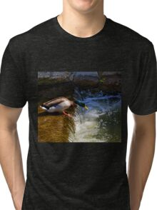 Down By the Riverside........ Tri-blend T-Shirt