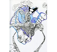 Ink Drawing Photographic Print