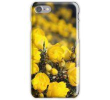 Gorse Bush (Ulex europaeus)  iPhone Case/Skin