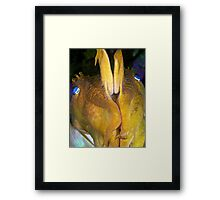 Giant Cuttlefish - Defensive Framed Print