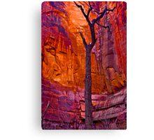 Zions Crimson Cliffs Canvas Print