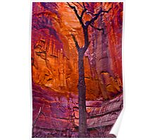 Zions Crimson Cliffs Poster