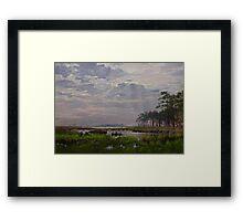 Marsh Of Blackwater Eastern Shore Framed Print