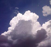 Cloud Contrast by maragoldlady