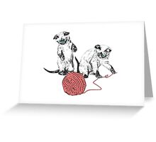 Siamese Kittens I Greeting Card