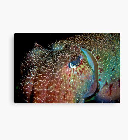 Giant Cuttlefish Canvas Print