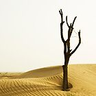 Dubai Desert by Joseph Najm