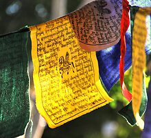 Prayer Flags by Deborah Hilton