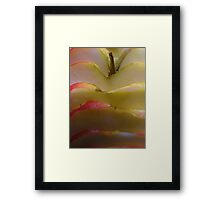 Sliced apple... Framed Print