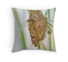 Home Sweet Home! Throw Pillow