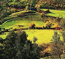 Chianti - Toscana by gluca