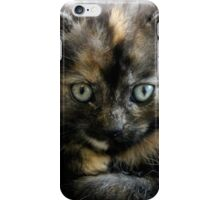The Most Serious Stare iPhone Case/Skin