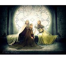 Light Elves Photographic Print