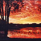Sunset, Mudjimba Queensland, Australia by Adrian Paul