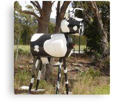 Cow Mail Canvas Print
