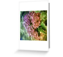 Pretty In Paint 3 Greeting Card
