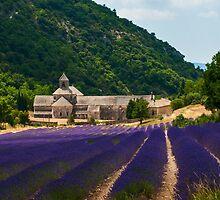 Lavender Field in Sénanque Abbey, Vaucluse-Provence, France by Yen Baet