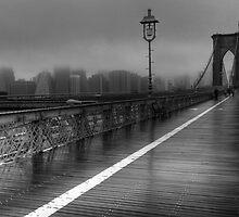 Urban Nebelung by JennieInNYC