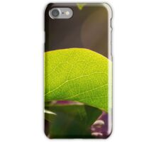 """Spring Sunshine"" iPhone Case/Skin"