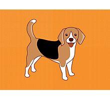Beagle Dog Photographic Print