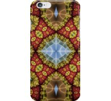 A Stained Glass Window iPhone Case/Skin