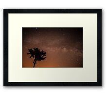 Starry Night. tree silhouetted on a star filled night  Framed Print