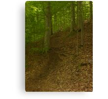 Prince William National Forest 2 Canvas Print