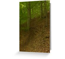 Prince William National Forest 2 Greeting Card