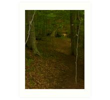 Prince William National Forest 3 Art Print