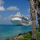 Emerald Princess moored in Aruba. by Timothy Gass