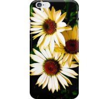 The Garden Collection...Fragrant Angel..  iPhone Case/Skin