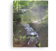Prince William National Forest 7 Metal Print