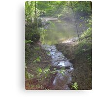 Prince William National Forest 7 Canvas Print