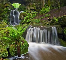 Waterfall at Smithills Hall by Steve  Liptrot