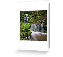 Waterfall at Smithills Hall Greeting Card