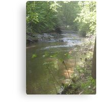 Prince William National Forest 10 Metal Print